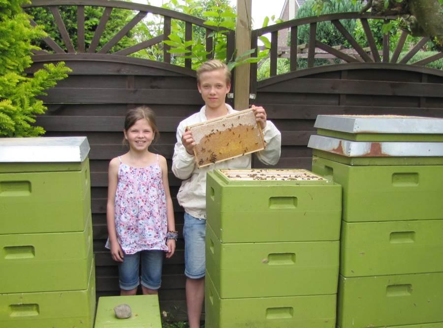 Foto Bienenstöcke und Geschwister Karasch