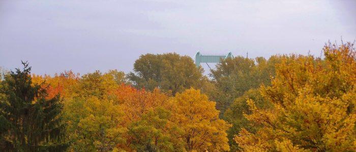 Blick zur Mülheimer Brücke (Foto: U. Sommer)