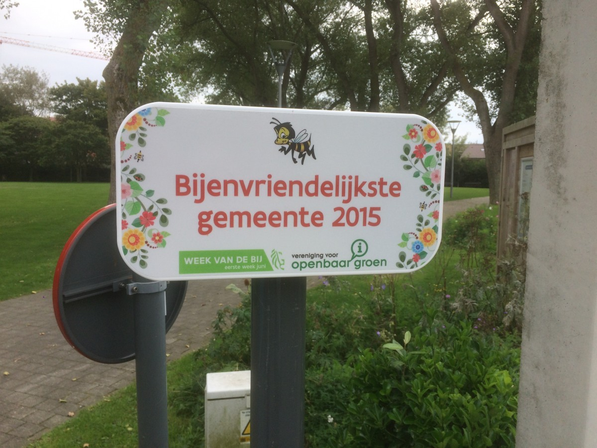Wildblumenwiese in den Niederlanden