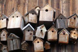 Ansammlung mehrerer Nistkästen aus Holz (Foto: pixabay)