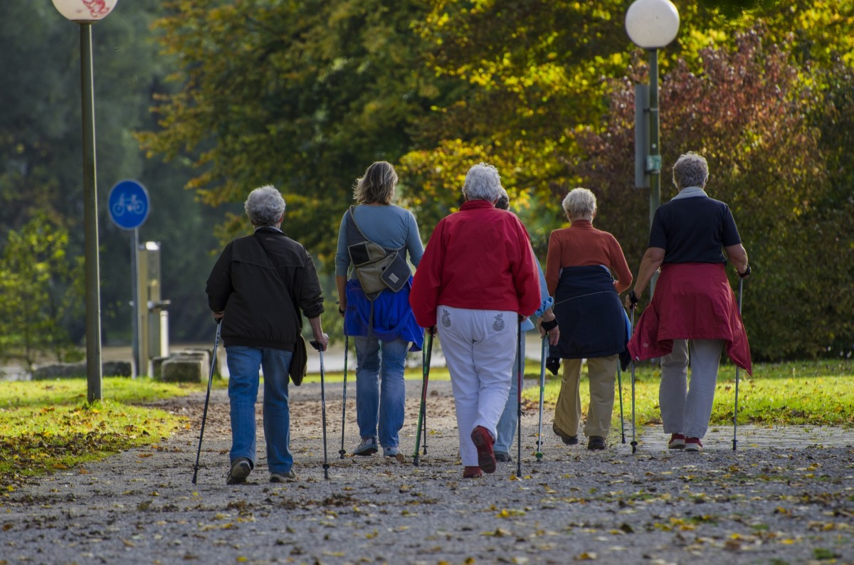 Eine Gruppe beim Nordic Walking