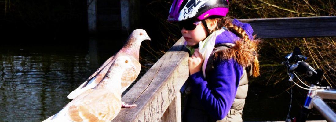 Mädchen mit Tauben