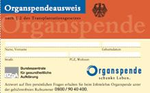 FitGes_GE_OrganSPA_C