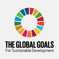 Die 17 SDGs